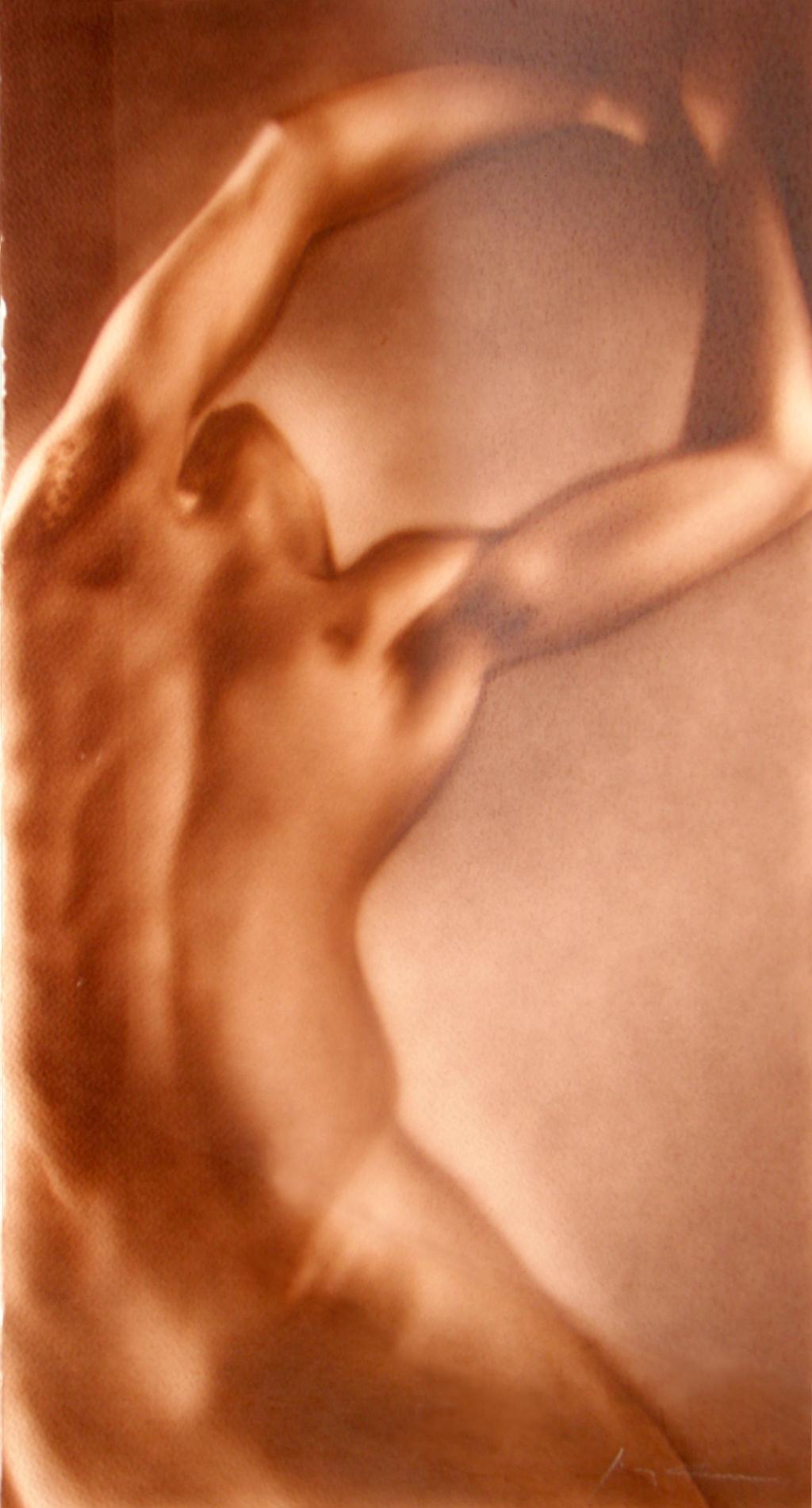 torso (1024x768)